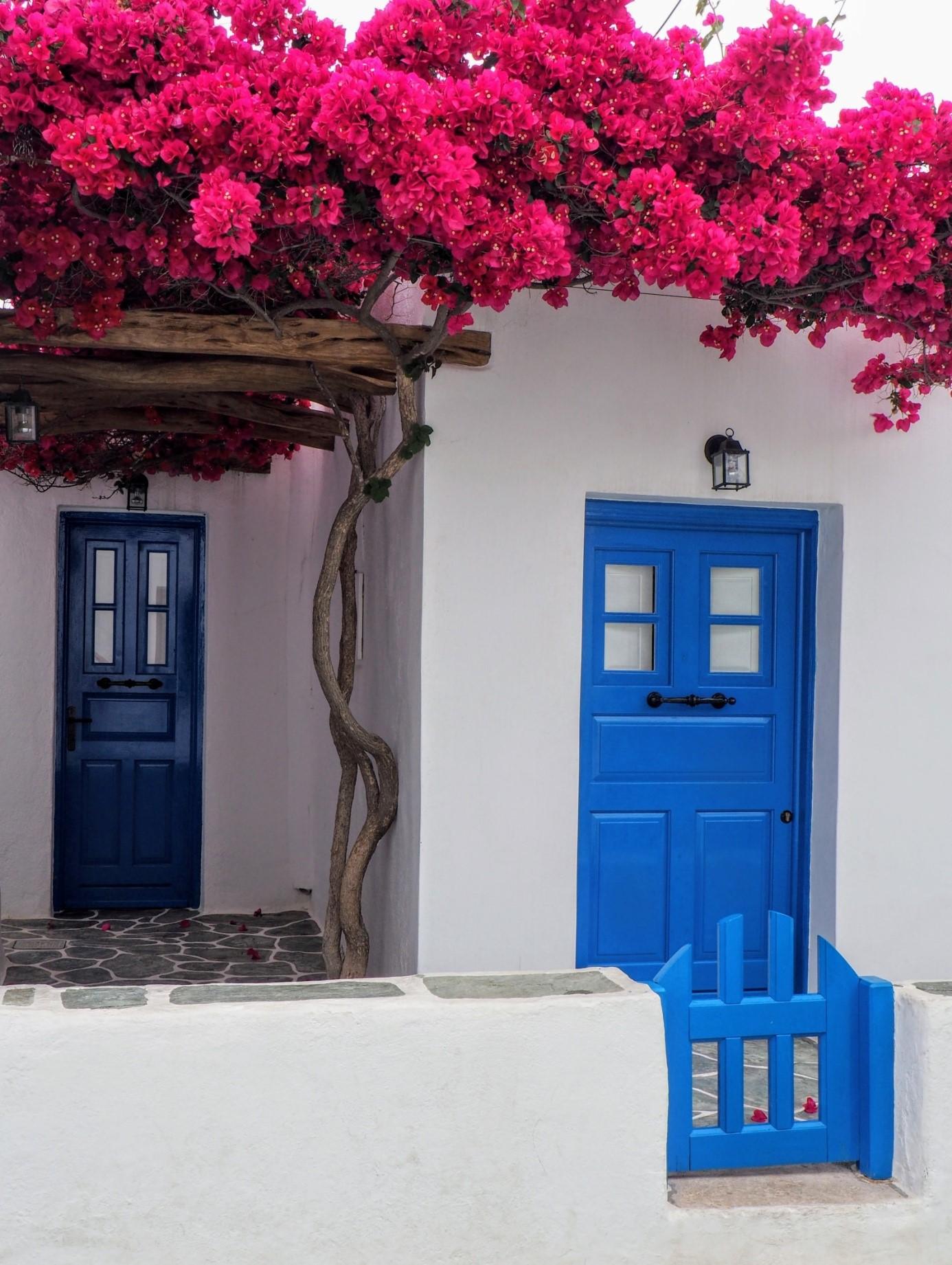 За какво да внимаваме, когато избираме нова входна врата